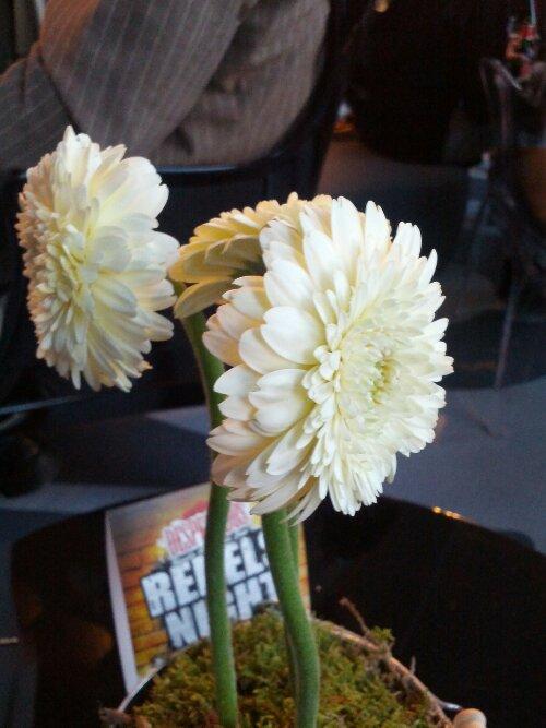Blumen im one80 Hostel Foyer