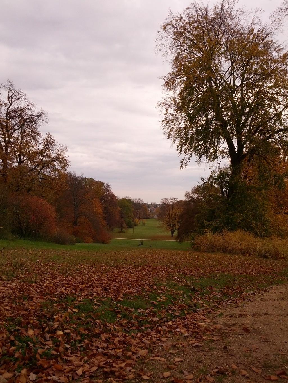 Schlosspark Glienicke - Blick Babelsberg