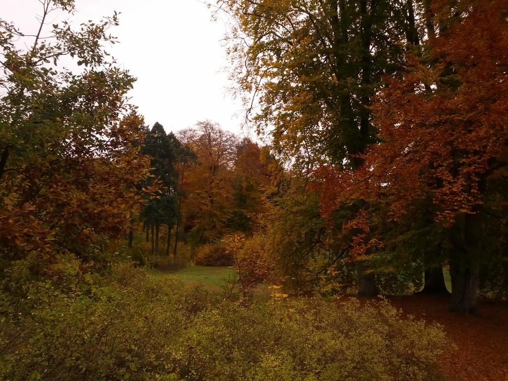 Schlosspark Glienicke -