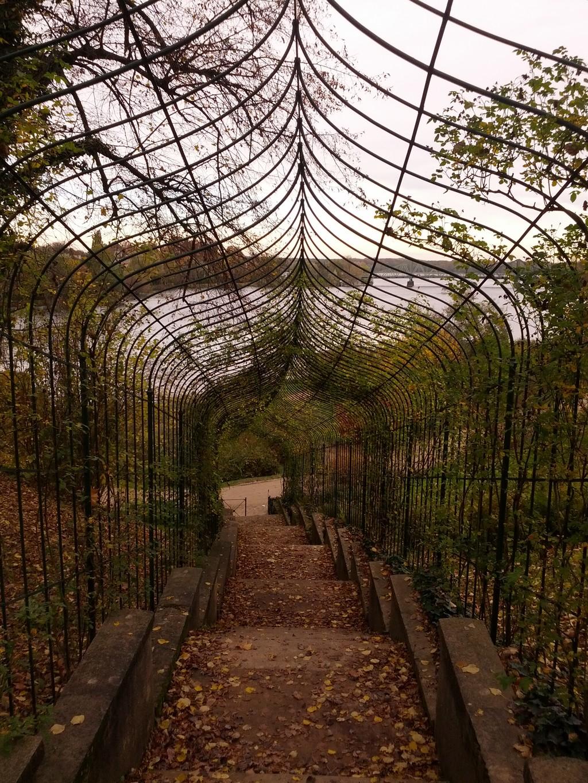 Schlosspark Glienicke - Rosentreppe